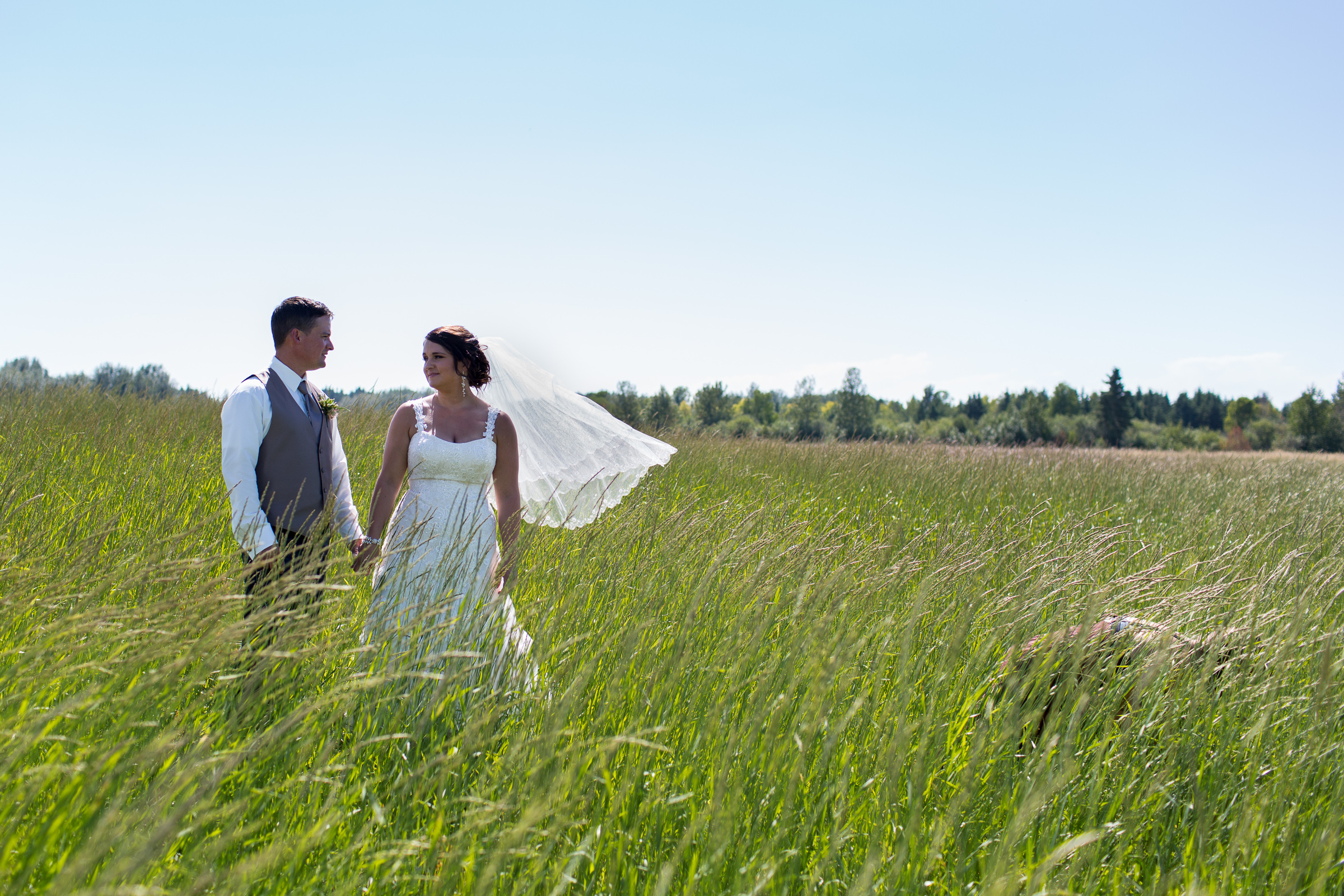 how to photograph a bridal veil