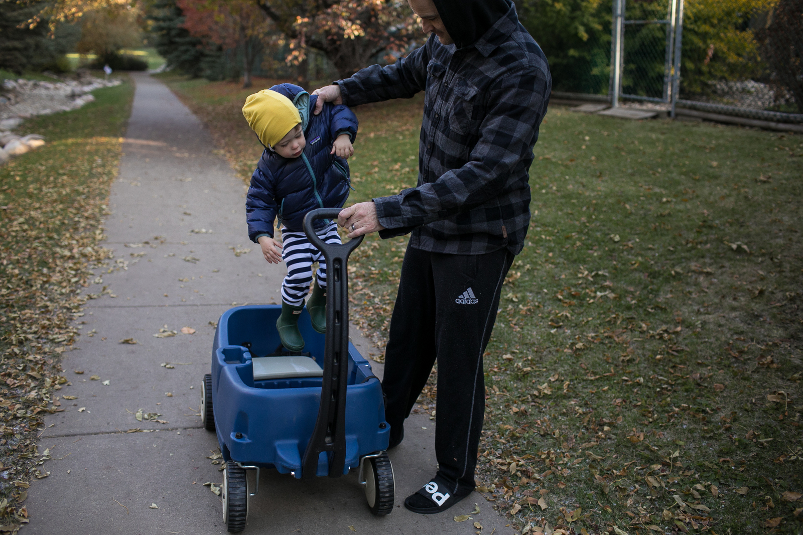 a funny moment as dad lifts his toddler sun back into his wagon on the walking path near their Edmonton home