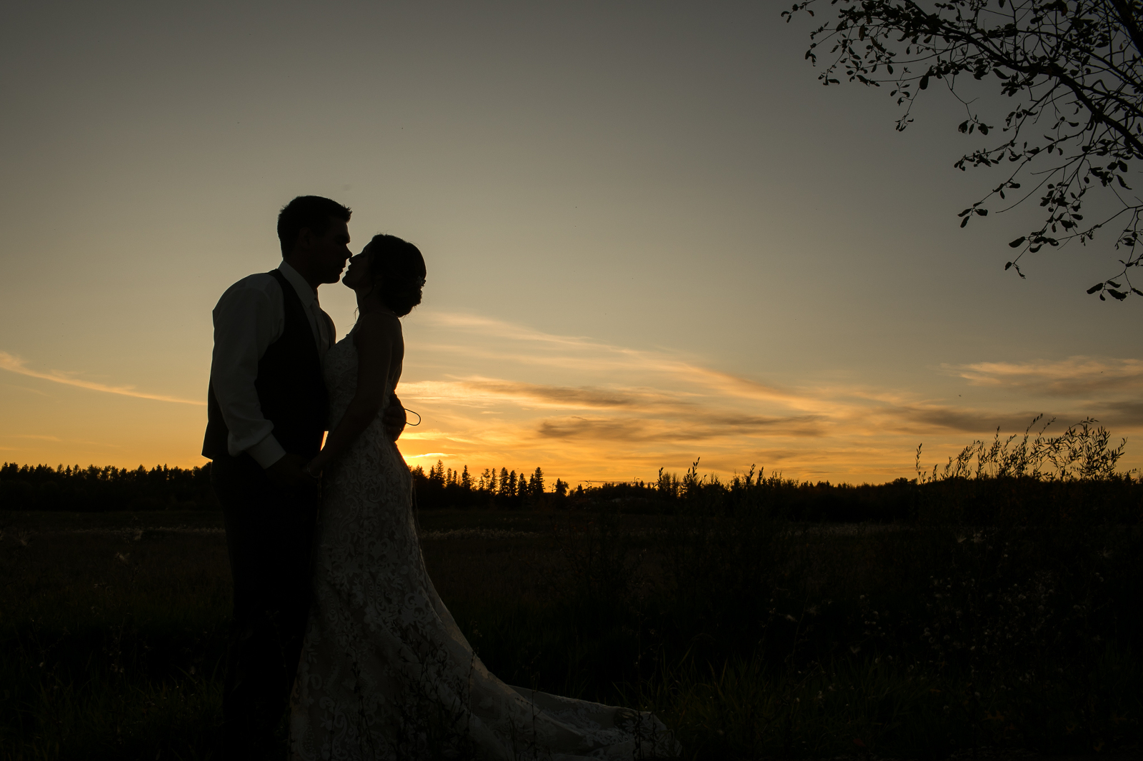 edmonton wedding photographer makes a picture of a bride and groom silhouetted against the sunset