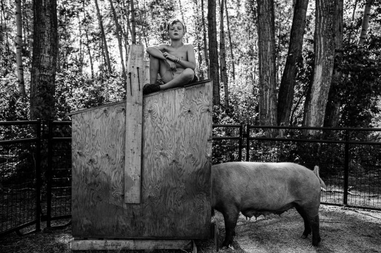 a kid spending some time in the pig pen