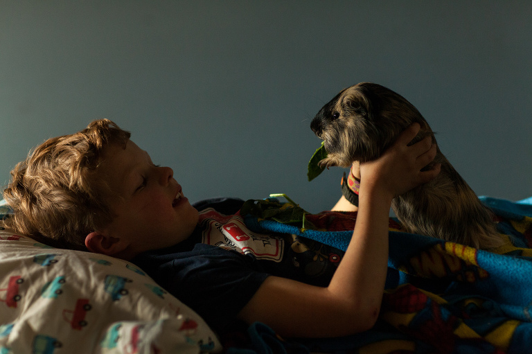 boy holds long haired guinea pig in his bedroom for an environmental portrait