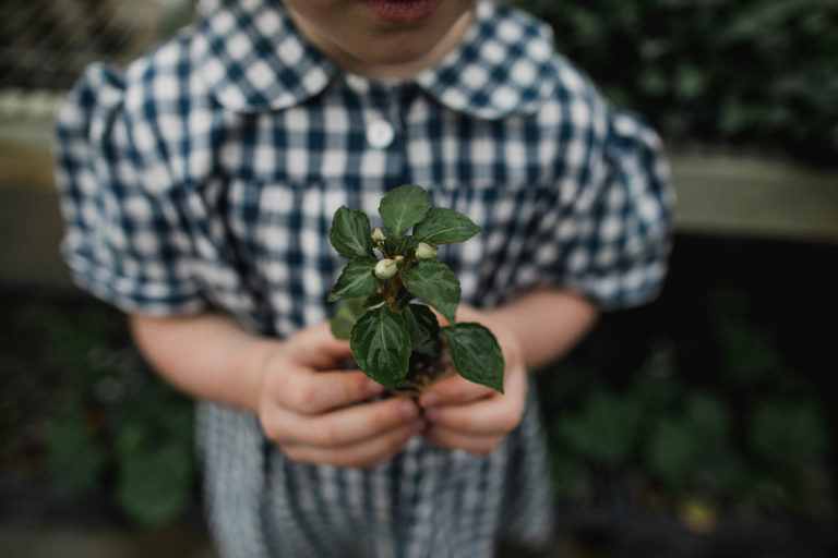 little girl in blue and white plaid dress by CLOTH holds a plant