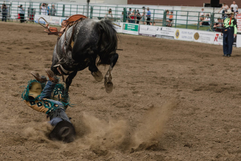 cowboy gets bucked off horse at small town rodeo