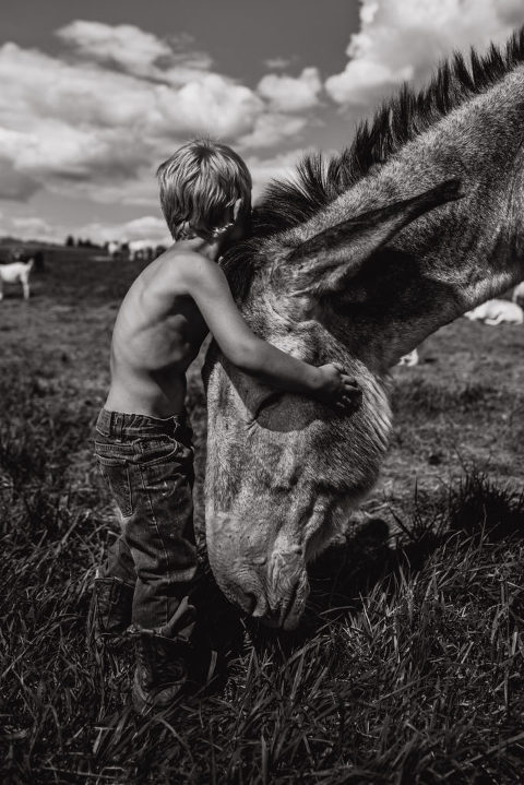 family picture of four year old hugging a donkey